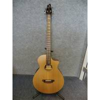 Breedlove Atlas Solo BJ350/CMe4